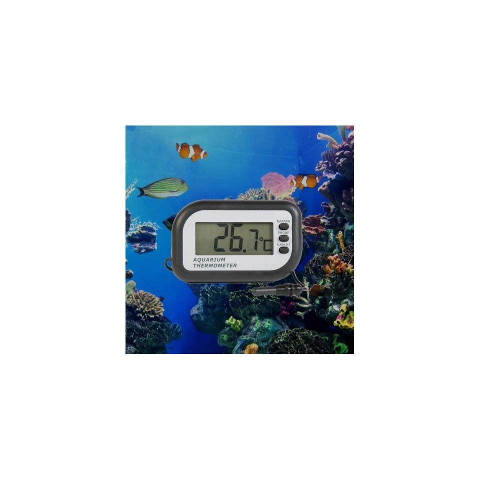 Thermomètre numérique pour aquarium 2