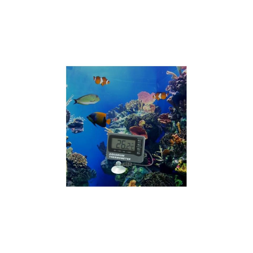 Aquarium thermometer with ambient sensor. 2