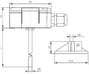 temperature probe with display and plunger